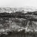 Richard Petit - Cheap Land - Untitled 07_83